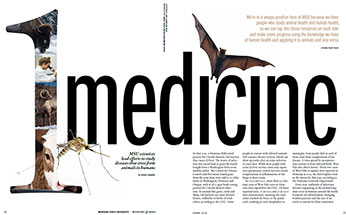One Medicine Article